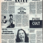 Cuestionario: David Zapata - Parachokes | Mick Jagger - Wandering spirit | Genesis - The way we walk | The Cult - Pure Cult | El Correo de Andalucía | 19 feb 1993