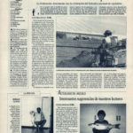Pesca deportiva / Selectivo Nacional de Ciprínidos en La Barqueta | Interesantes sugerencias de nuestros lectores | El Correo de Andalucía | 1 jul 1994